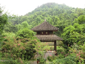 Pagoda in tea field outside Hangzhou