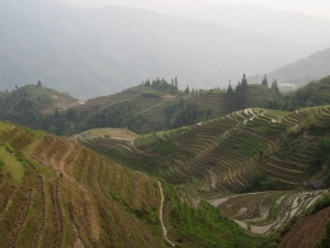 Mountain rice terraces around Ping'an