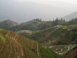 Mountain rice terraces around Ping'an